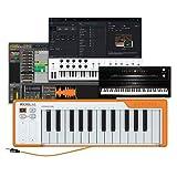 Arturia Microlab Orange – Clavier de Contrôle Usb Compact à 25 Touches