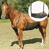 HilMe Cavallo Fly Tappeti, Cavallo Addome Coperte Elasticità Anti-zanzara Rete per Outdoor, Regolabile Flysheet Rete Pancia Protezione Protezione Cover - Come Mostrato, Gratis Misura