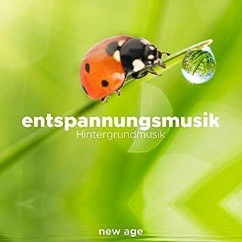 Entspannungsmusik - Hintergrundmusik