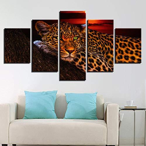 cheetah prints pictures - 5