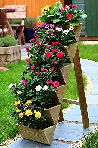Fioriera da giardino Beanwood in legno per erbe aromatiche, fragole e fiori | 6 contenitori | Legno trattato a pressione