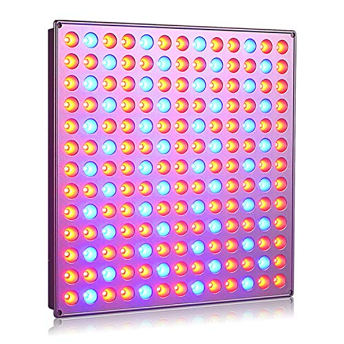 Roleadro Plant Grow Light, 75W Led Growing Light with Red Blue Grow Lights for Indoor Plants Vegetables Flower Growth Lamps