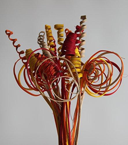 24 Stiele Cane Bunt gemischt Rot Gelb Orange Natur Dekorieren Trockenblume Gestecke Bodenvasen Floristik