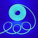 Xunata Tira de luces LED de neón, 5 m, 12 V, 2835, 600 ledes, resistente al agua, flexible, incluye fuente de alimentación de 5 A