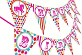 POP parties Carousel Carnival Birthday Banner - Multi Color