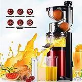 QWESHTU Centrifuga Frutta e Verdura Estrattore di Succo Freddo con Spremitura Lenta Tecnologia Easy Juice, Filtro Succhi, Accessorio Sorbetti