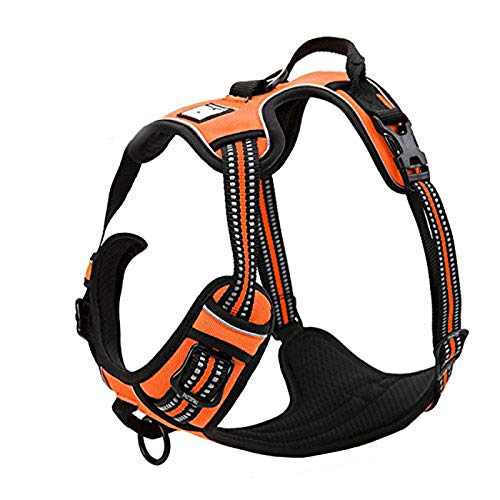 TRUE LOVE Adjustable No-Pull Dog Harness Reflective Pup Vest Harnesses Comfortable Control Brilliant Colors Truelove TLH5651(Orange,M)