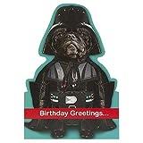 Hallmark Birthday Humour Star Wars Darth Vader Card - Medium