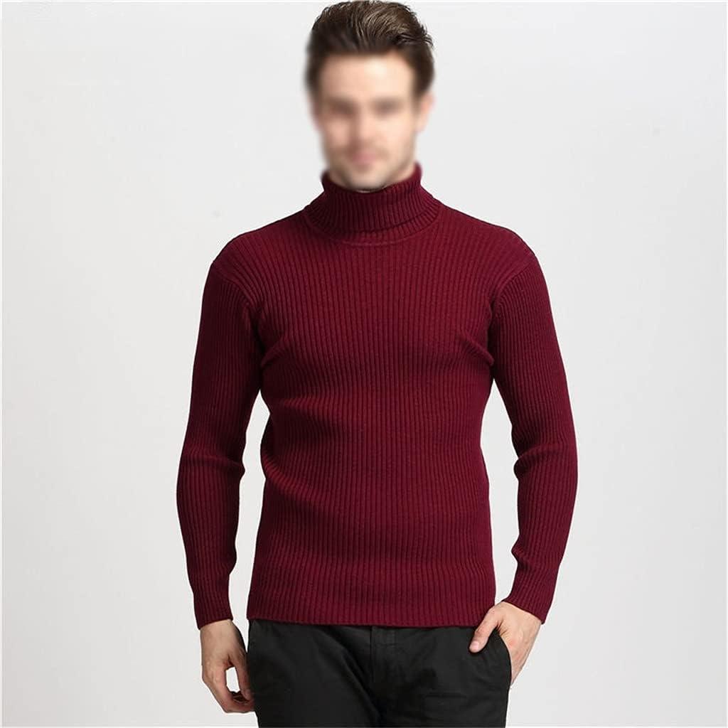 GPPZM Winter Thick Warm Cashmere Sweater Men Turtleneck Mens Sweaters Slim Fit Pullover Men (Color : D, Size : XL)
