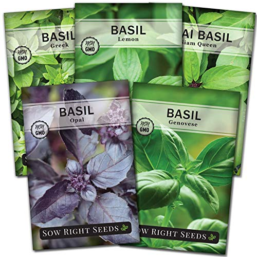 Sow Right Seeds - Basil Seed Collection...