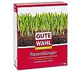 Dehner Gute Wahl Rasendünger, 4 kg, für ca. 120 qm