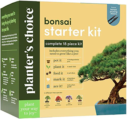 Bonsai Starter Kit - The Complete Growing Kit to Easily Grow 4 Bonsai Trees from Seed + Comprehensive Guide & Bamboo Plant Markers - Unusual Gardening Gifts Ideas for Women - Indoor Bonzai