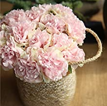 ARTSTORE Artificial Flowers Bouquet 5 Large Pieces Per Bundle China's National Flower Real Looking Peony for Wedding Home Decorations Living Room DIY Hotel Decorations Party Decora (Pink Greenish)