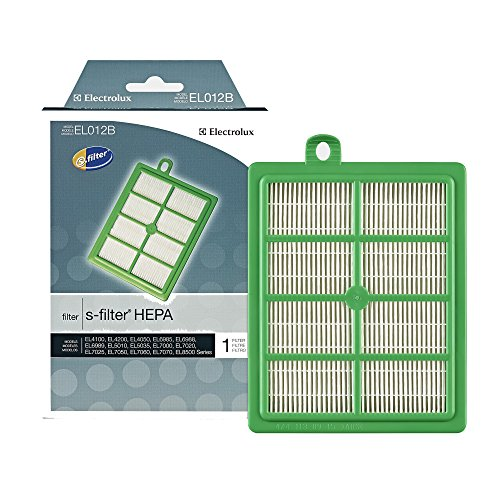 Electrolux H12 S HEPA Vacuum Filter, Green