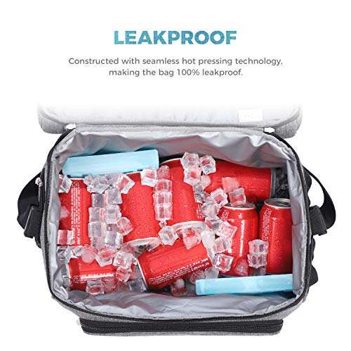 Lifewit 15L 24 Cans Insulated Picnic Lunch Bag Large Soft Cooler Bag for Outdoor/Camping/BBQ/Travel, Grey