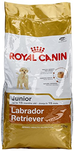 ROYAL CANIN Labrador Retriever Junior Secco Cane kg. 12 Mangimi Secchi per Cani