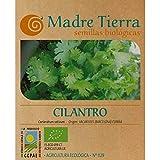 Madre Tierra - Semillas de Cilantro (Coriandrum Sativum) Origen Vacarisses (Barcelona)- Peso Aprox. 1 Gramo