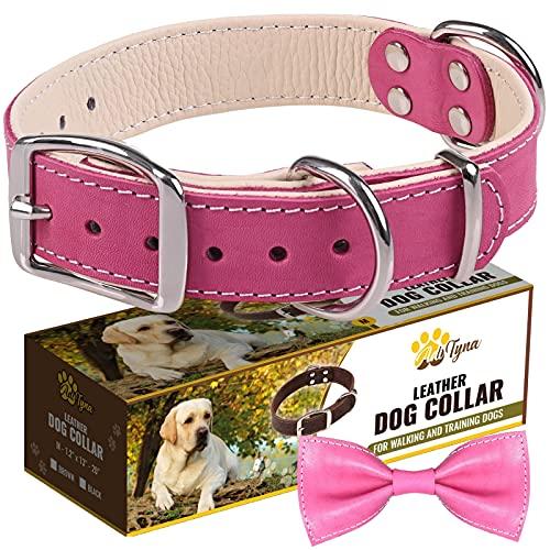 ADITYNA Padded Leather Dog Collar – Girl Dog Collars – Pink Dog Collars for Medium Female Dogs