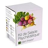 Kit de Salade Psychédélique par Plant Theatre - 5 salades étonnantes à cultiver soi-même - Idée cadeau
