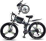 Bicicleta electrica Bicicleta eléctrica Plegable de la Bicicleta eléctrica 350W Peinway Deporte Ciudad de la Ciudad asistida por la Bicicleta eléctrica con 26'Súper Liviana de aleación de magnesio de
