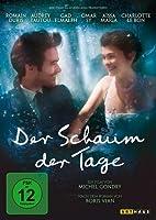 Der Schaum der Tage - Doppel DVD