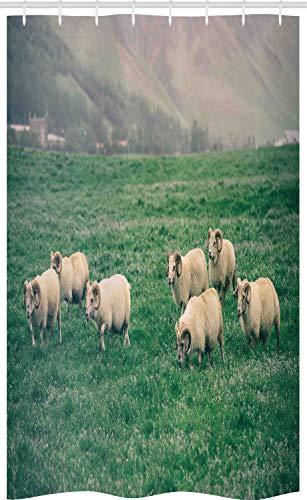 ABAKUHAUS Boerderijdier Douchegordijn, Schapen die op Gras, voor Douchecabine Stoffen Badkamer Decoratie Set met Ophangringen, 120 x 180 cm, Ecru en Fern Green