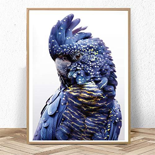 Danjiao Australian Bird Print Black Cockatoo Wandkunst Navy Blue Parrot Bird Poster Und Drucke Leinwandbilder Für Wohnzimmer Dekor Wohnzimmer 60x90cm