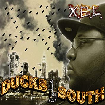 Ducks Fly South