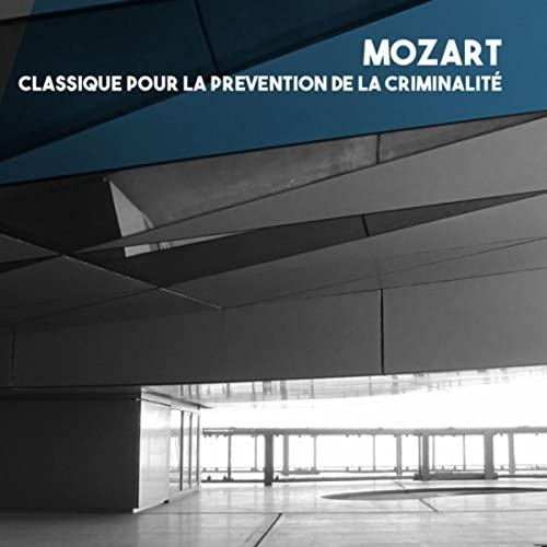 Bratislava Chamber Orchestra, Vlastimil Horak & Sinfonieta Slovaka Chamber Orchestra