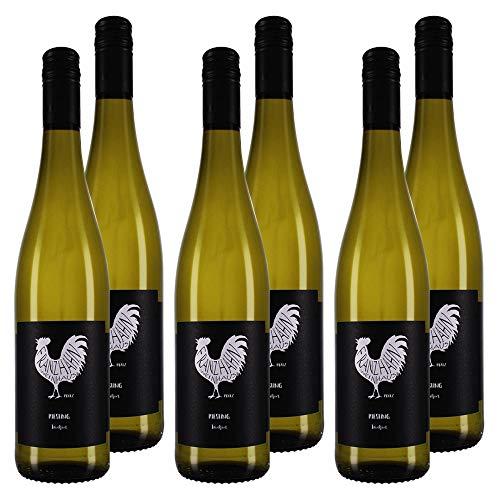 KERNenergie Qualitätswein in Großpackung RIESLING (6 x 0,75l)   trockene Weißweine aus Deutschland