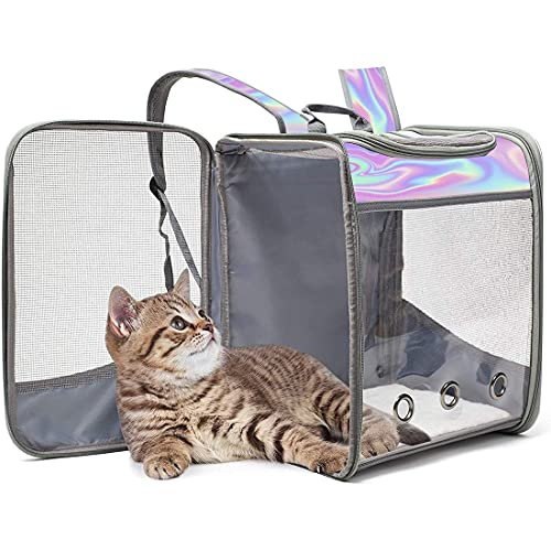 透明なペットのバックパック、子犬と子猫のリュックサック、折りたたみ、屋外の屋外、高精細な透明な窓、小動物に適した