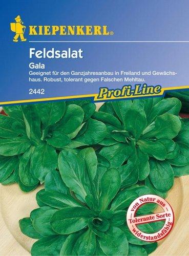 Feldsalat Gala