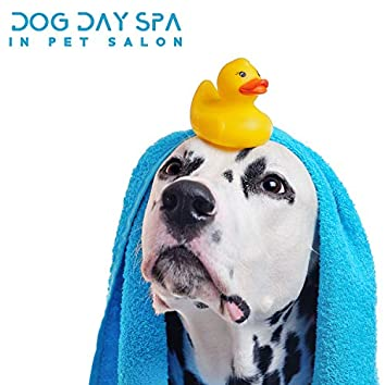 Dog Day Spa - In Pet Salon, Relaxing Tracks for Dog Anxiety. Pet Therapy, Animal Reiki