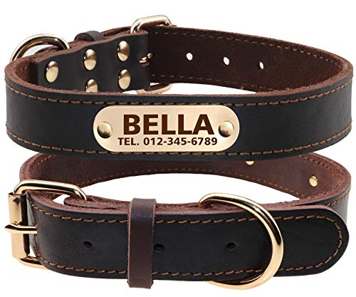 TagME Personalized Leather Dog Collars with Engraved Nameplate,Brown XLarge