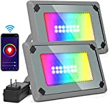 30W LED Flood Light, Smart App RGB Flood Light, Outdoor Color Changing Flood Lights 2300LM IP66 Waterproof WiFi Dimmable Wall Washer Lights for Yard Garden Stage Party Landscape - 2 Connected Lights