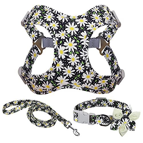 Conjunto de Correa y Collar de arnés de Bulldog francés Impreso sin Tirar arnés de Perro Chaleco Conjunto de Collar de Correa para Perros pequeños medianos Grandes