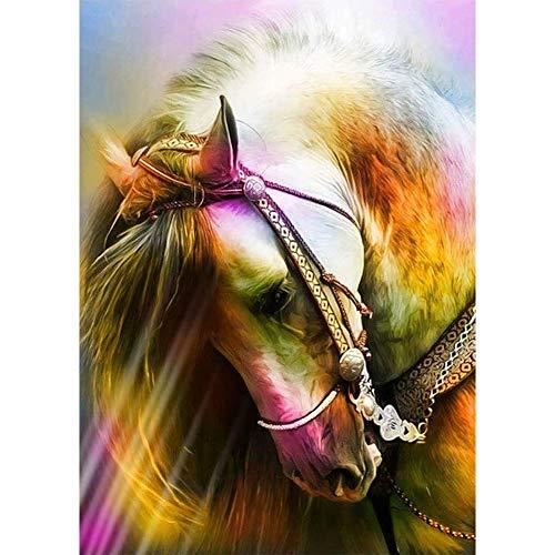 5D Diamond Painting Diamant Malerei Painting Bilder, Wowdecor Schönes Weiß Pferd Tiere Full Set Groß DIY Diamant Gemälde Malen Nach Zahlen