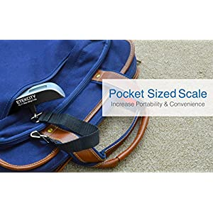 Etekcity 2 Pack Digital Hanging Luggage Scale, Rubber Paint, Temperature Sensor, 110 Pounds, Silver