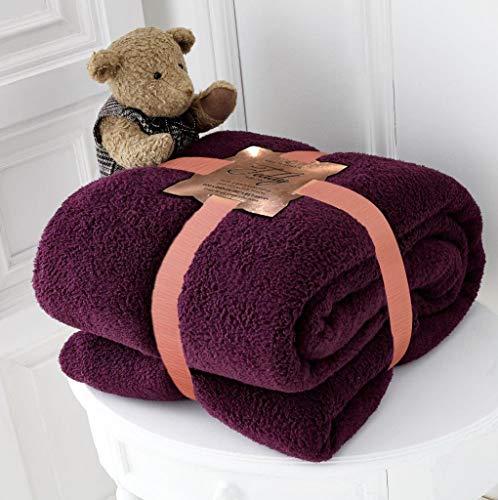 RayyanLinen Teddy-Fleece-Überwurf, Decke, warm, weich, luxuriös, kuschelig, für Sofas, Tagesdecke, Reise, Überwurf (Aubergine, Einzelbett) 100 x 150 cm