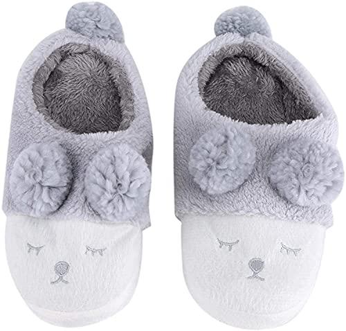 RosieLily Zapatos Casuales Cálidos De Invierno Zapatos Lindos De Dibujos Animados De Ropa Interior para Mujer(Size:40-41,Color:Gris)
