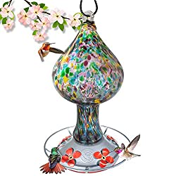 16 Best Hummingbird Feeders of 2020, Reviewed and Rated 22