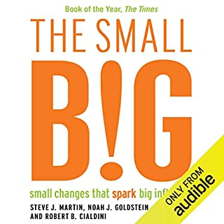The Small BIG cover art