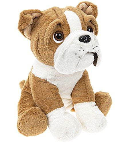 20 cm niedliche britische Bulldogge Hund Welpen Teddy weich Plüsch Beanie Spielzeug