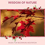 Wisdom Of Nature - Music For Beginners Meditation