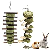 Fulfun Bunny Chew Toys for Teeth, Molar Rabbit Toys Natural Apple Sticks for Rabbits, Chinchillas, Guinea Pigs, Hamsters Chewing Playing Improve Dental Health