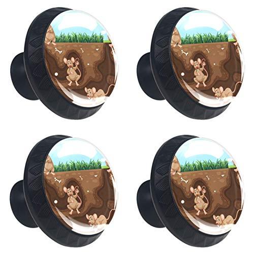 KAMEARI Rat Family Living - Juego de 4 pomos para cajones (cristal, forma de círculo, con tornillos, para el hogar, cocina, oficina, 4 unidades)