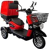 Rolektro E-Carrier 25 km/h Dreirad - 1000W Elektroroller - Lieferroller bis 70km - 3-Rad Elektromobil E-Scooter Roller EU-Zulassung