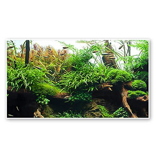 WAVE Amazonia Double Fond pour Aquariophilie 45 cm x 15 m