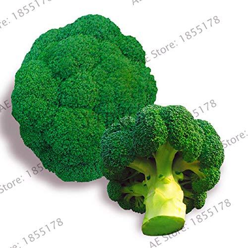 Semi del Pacchetto: Grande promozione di Trasporto Libero Broccoli Semi / 10PCS Bonsai icaGreen Cavolfiore Orto Seedas, CT90T9