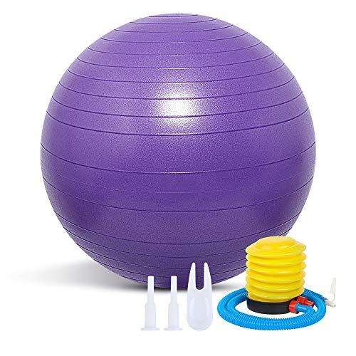Pelota de Ejercicio Gruesa Anti-explosión Que Incluye Bomba de Pelota, Pelota de Yoga con Bomba de Aire, Pelota de Pilates, Pelota de Fitness para el hogar, la Oficina, 65 cm, púrpura